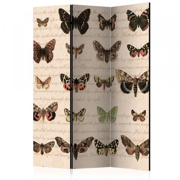 Paraván - Retro Style: Butterflies [Room Dividers]