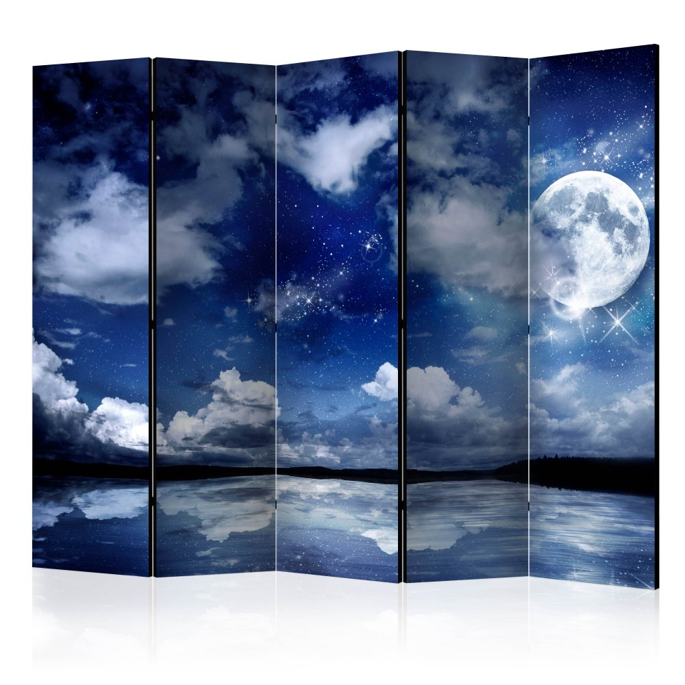 Paraván Magic Night Dekorhome 225x172 cm (5-dílný)